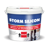 Storm Silicon